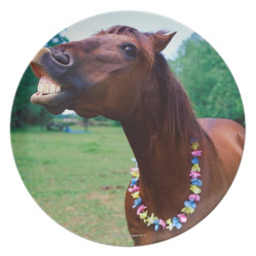 brown_horse_wearing_necklace_baring_teeth_plate-re96b402797e340c19bdee1daa2c03869_ambb0_8byvr_512